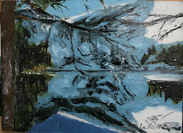 Michael Flaherty - REFLECTIONS GLENTEENASSIG 2 :  9 x 12 - OIL ON BOARD